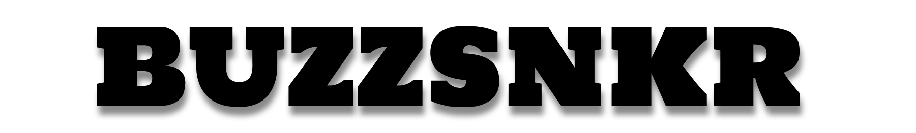 BUZZSNKR